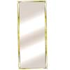 Mylar Door Mirror Rectangle 30_ (BD)