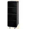 3-Shelf Cabinet 4314_ (PJ)