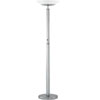 Rexford Floor Lamp w/Remote Control LS-9920PS/FRO (LS)